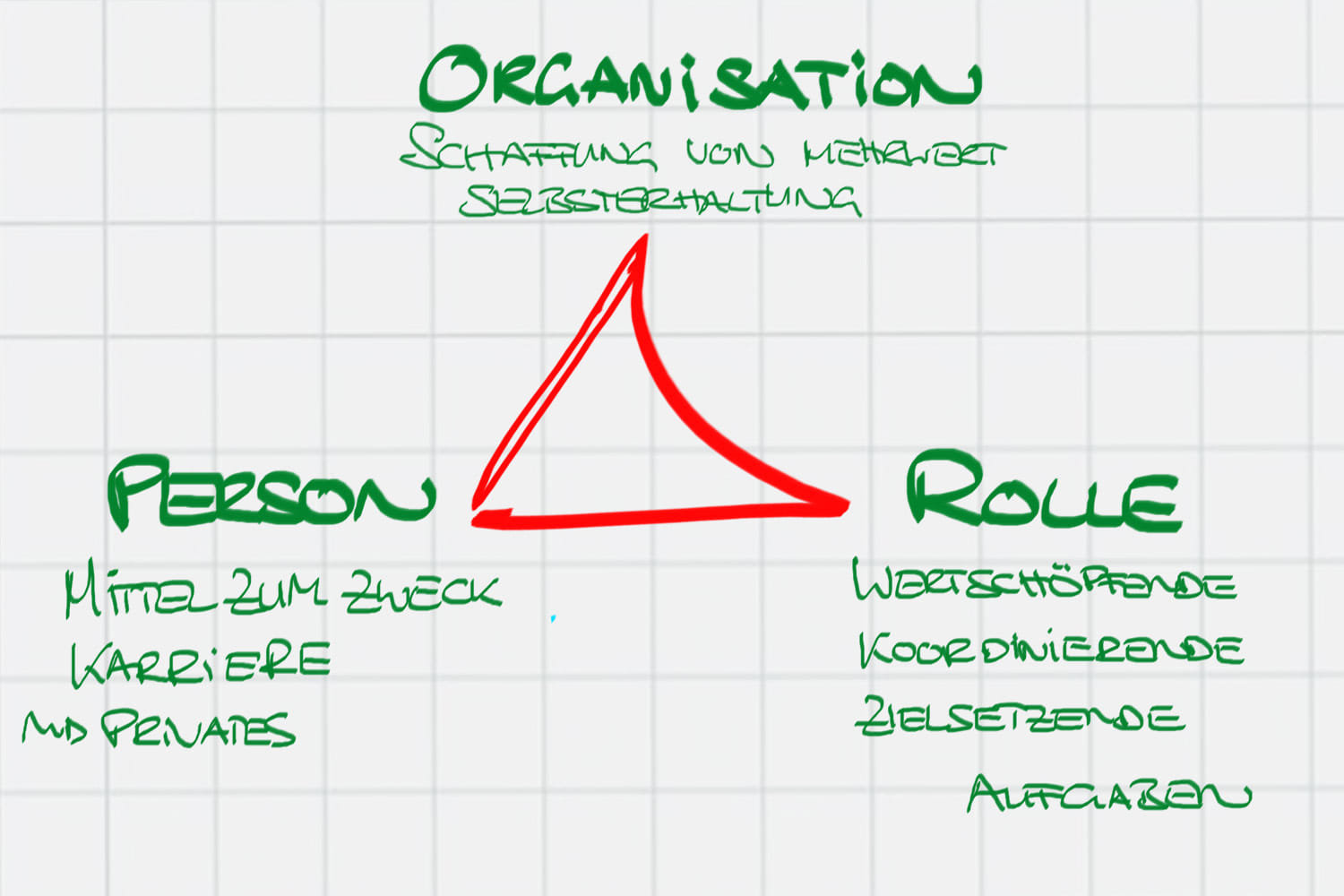 Person-Rolle-Organisation im Coaching-Prozess